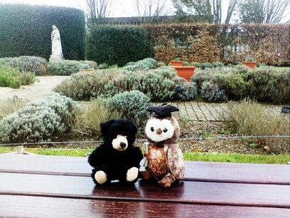 wol and tedz in heather garden at buckfast